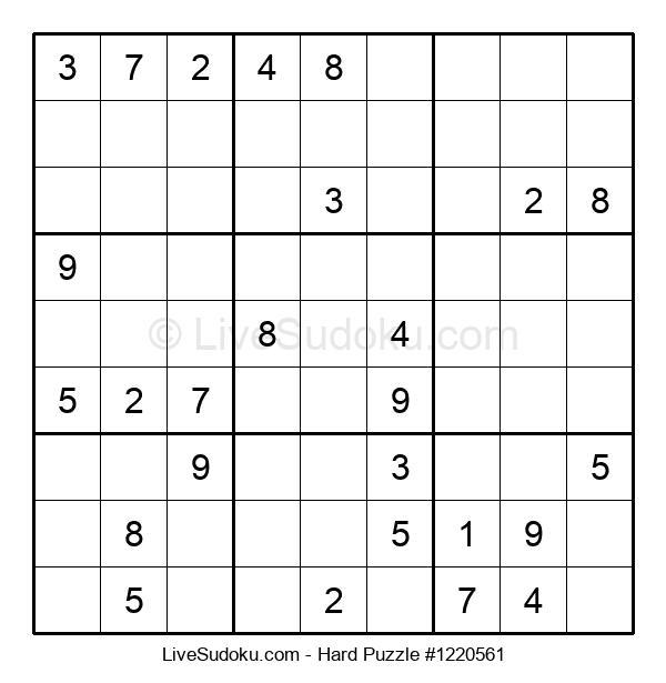 Hard Puzzle #1220561