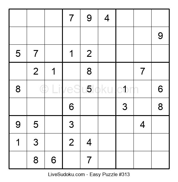Beginners Puzzle #313