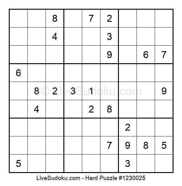 Hard Puzzle #1230025
