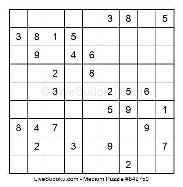 Medium Puzzle #842750