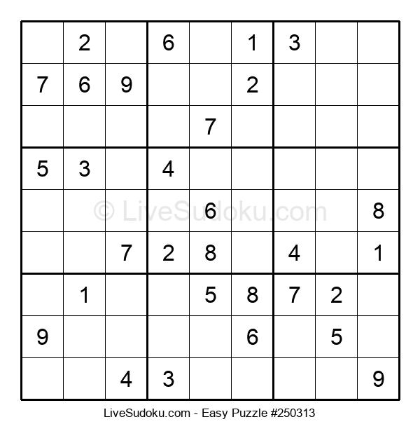 Beginners Puzzle #250313