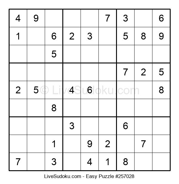 Beginners Puzzle #257028
