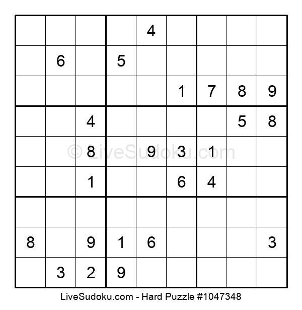 Hard Puzzle #1047348