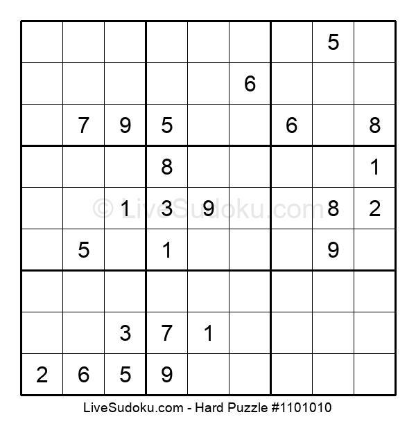 Hard Puzzle #1101010