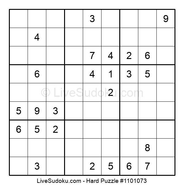 Hard Puzzle #1101073
