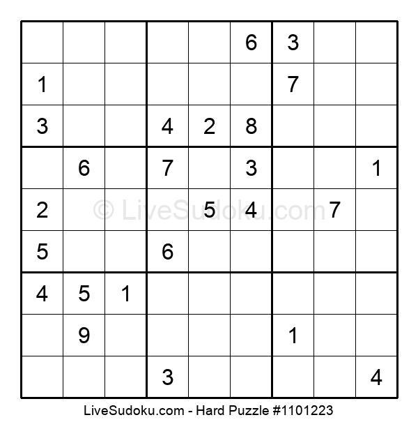 Hard Puzzle #1101223