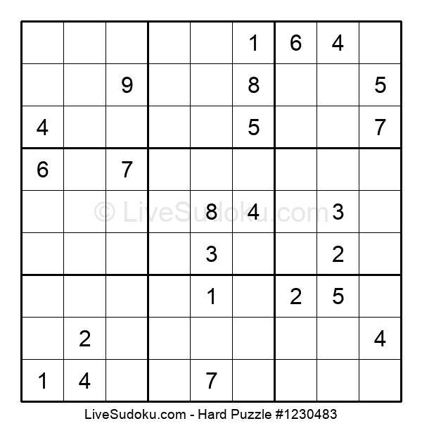 Hard Puzzle #1230483