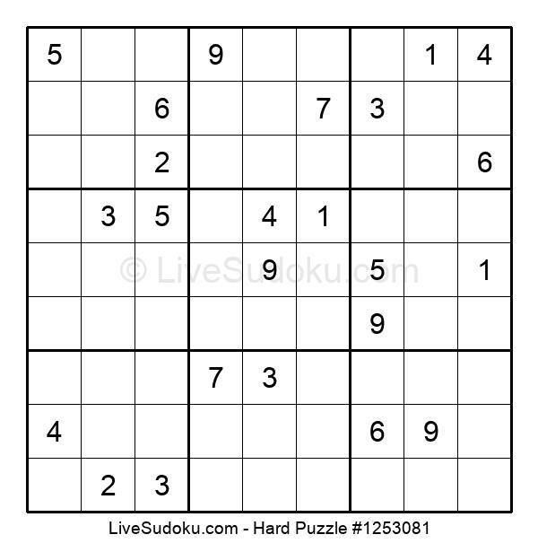 Hard Puzzle #1253081