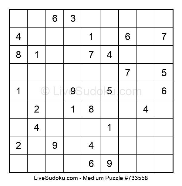 Medium Puzzle #733558