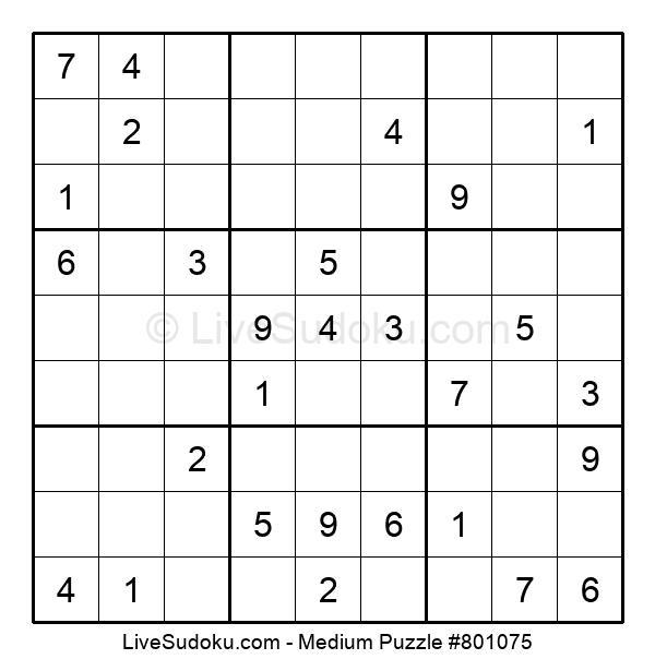 Medium Puzzle #801075