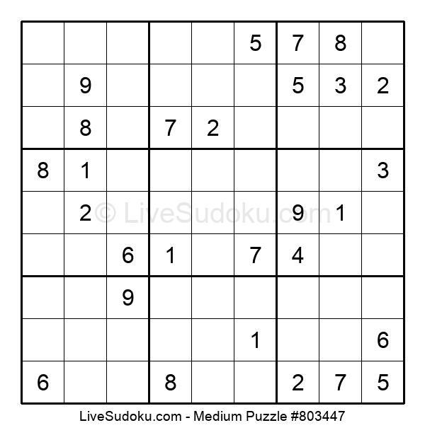 Medium Puzzle #803447