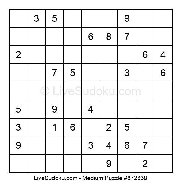 Medium Puzzle #872338